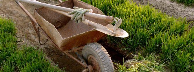 лопата с травой