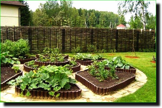 Дизайн сада-огорода своими руками фото