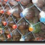 Строим забор из пластиковых бутылок своими руками