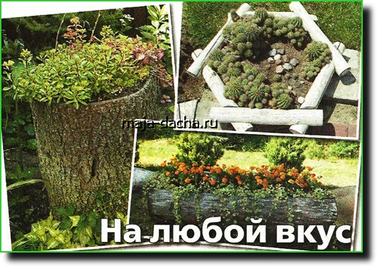 Цветники в саду фото