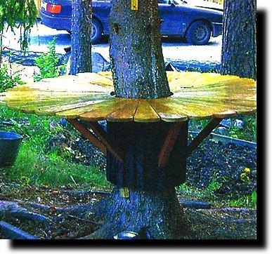 Стол вокруг дерева своими руками