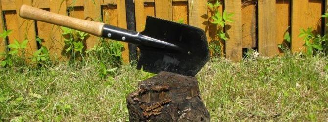 лопатка для огорода