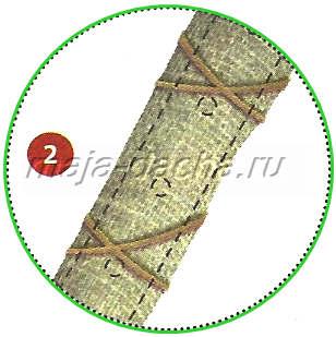 Вертикальные грядки из труб