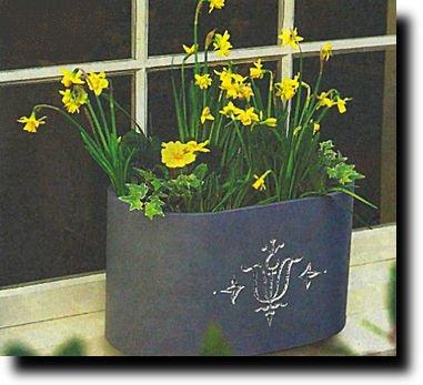 Весна на подоконнике