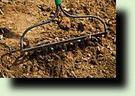 граблями рыхлю почву