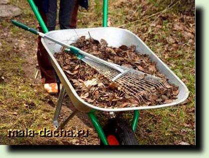 уборку сада от опавших листьев