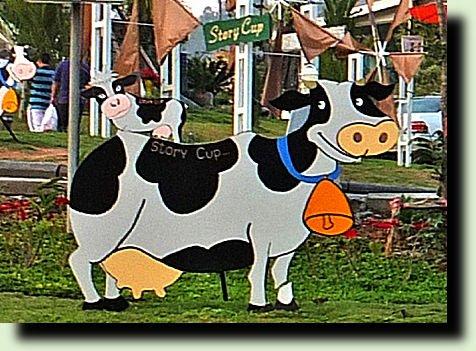 вырезаем корову сами для дачи