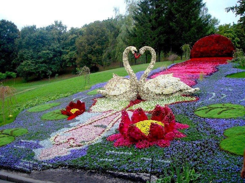 Декорирование дачного участка цветами