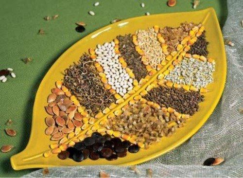 Урожайность зависит от выбора семян