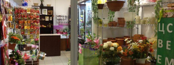 Магазин цветов и семян