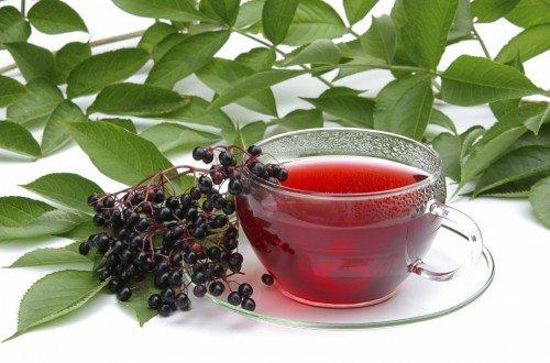 Рецепты приготовления чая из шиповника