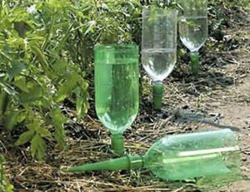 Дозированный полив с помощью пластиковой бутылки