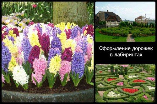 Сад-лабиринт