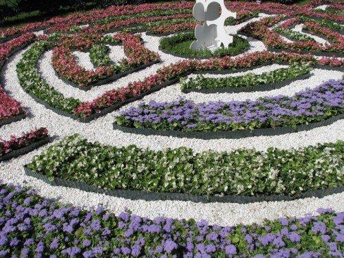 Лабиринт из цветов в саду