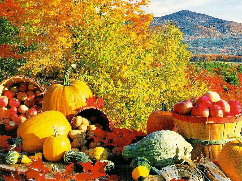 На даче осенью