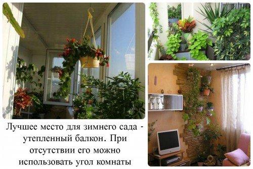 Места для зимнего сада