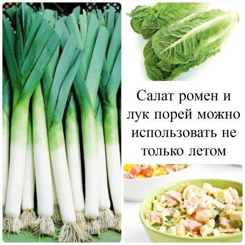 Салат ромен и лук порей