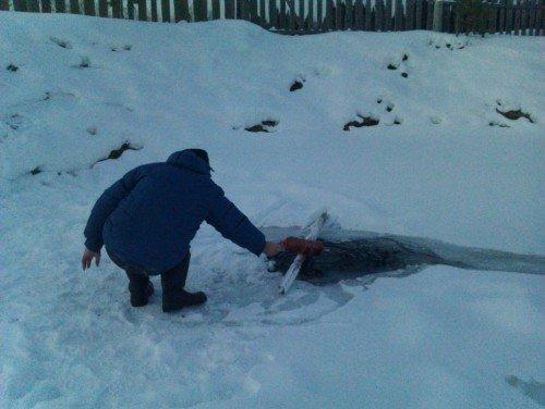 Расчитстка снега