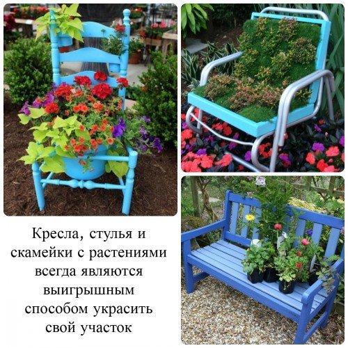 Скамейки и кресла с растениями