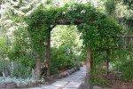 Цветущая арка всегда создает ощущение зеленого праздника
