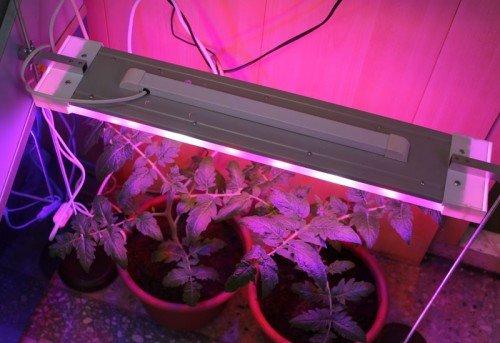 Подсветка светодиодной лампой