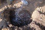 Внесение минеральных удобрений в грунт