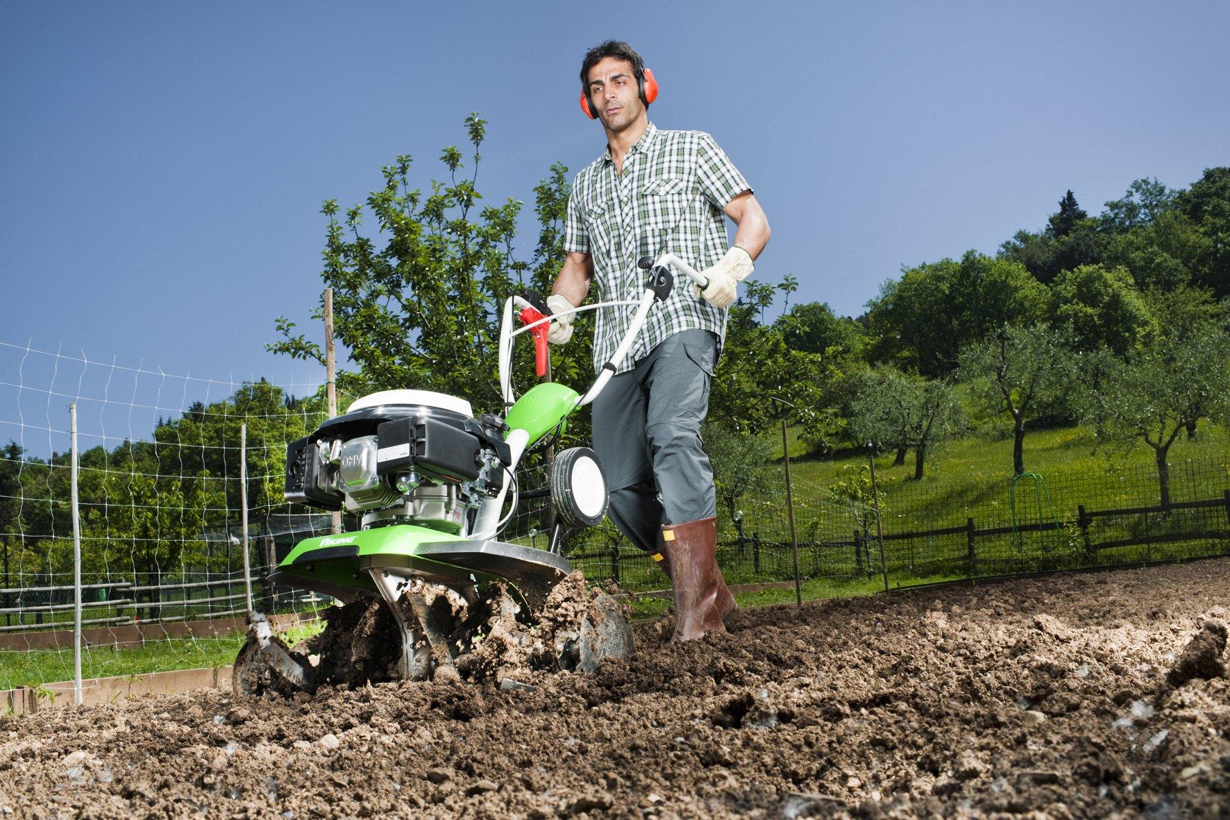 Как сделать правильный анализ микроклимата сада?
