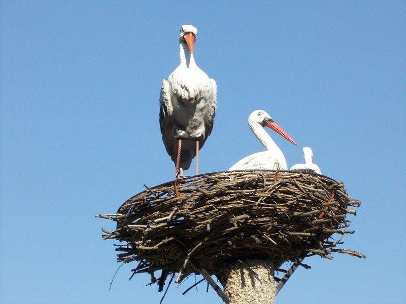 Как сделать гнездо декоративное для аиста - Pylondance.ru