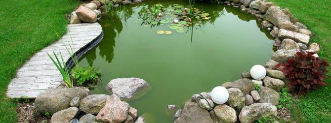 Пруд с рыбой на даче своими руками ландшафтные идеи фото