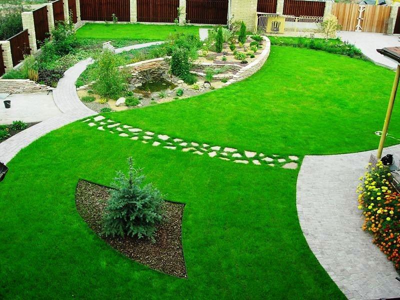 Техника ухода за газоном весной, летом, осенью: как правильно ухаживать за газонной травой