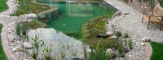 Оборудуем водоём для запуска рыбок