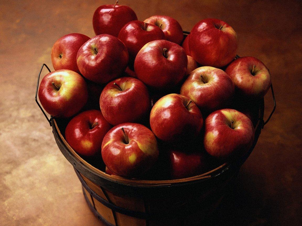 Как собирать и хранить яблоки