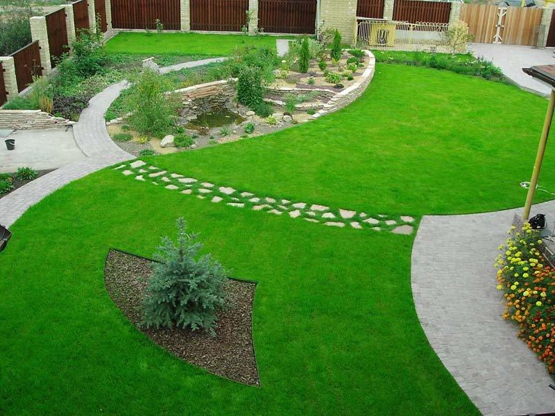 Выращивание газона своими руками