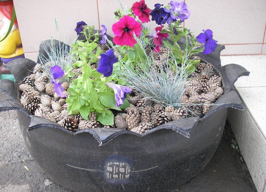 Какие цветы можно посадить в покрышках фото