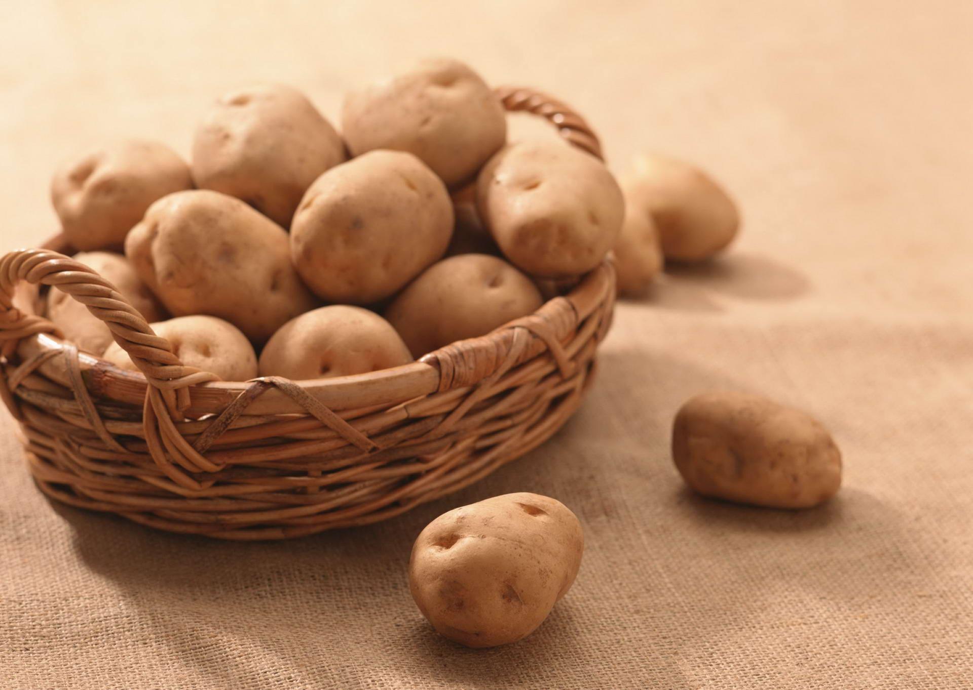 Мой опыт выращивания картофеля в контейнерах