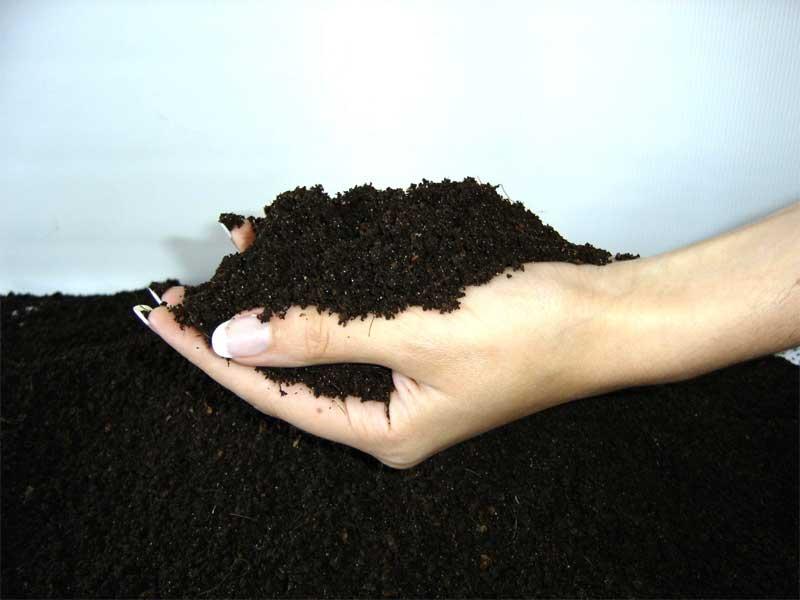Улучшаем качество почвы с помощью биогумуса