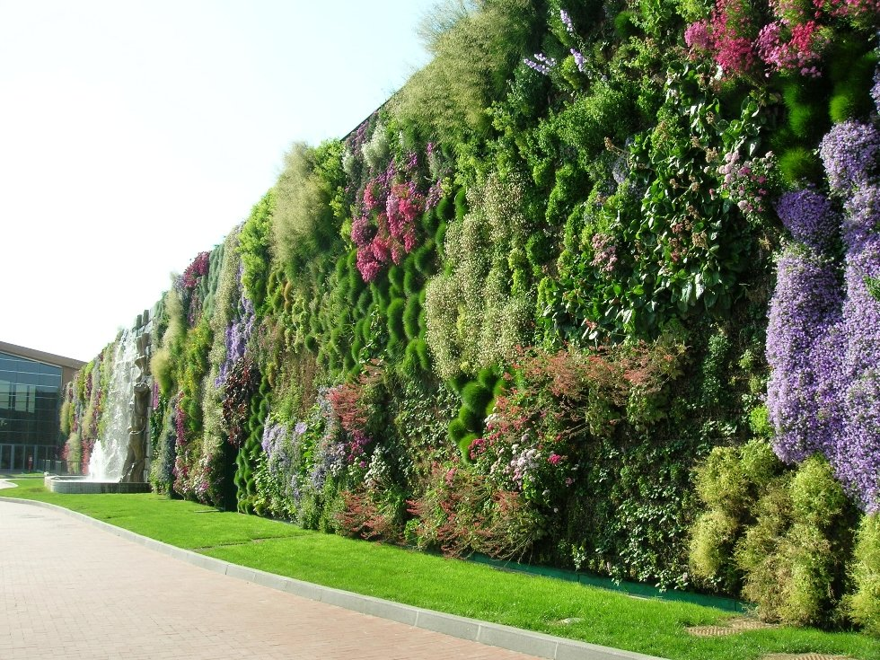Делаем цветущие стены