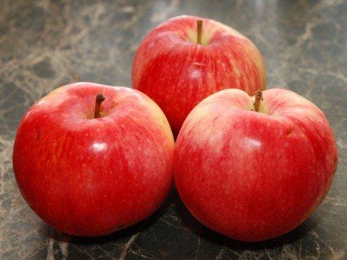 Яблоки сорта Услада