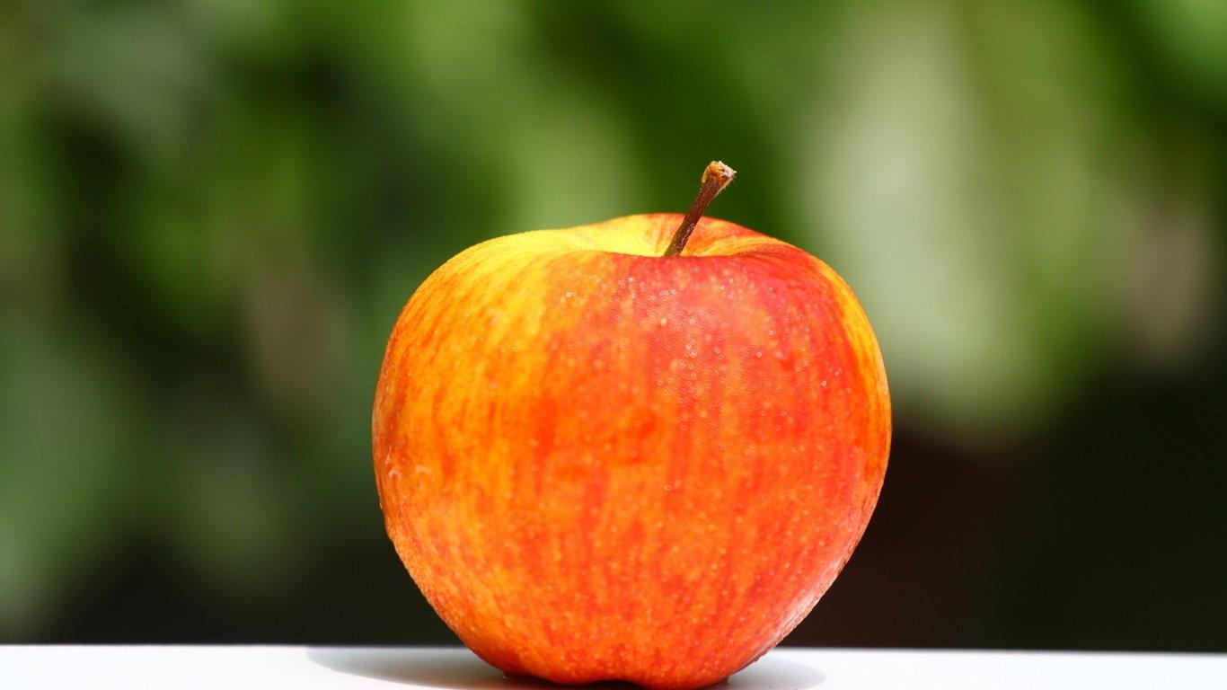 яблоня грушовка
