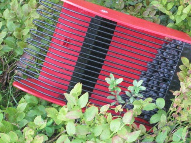 Совок для сбора ягод своими руками