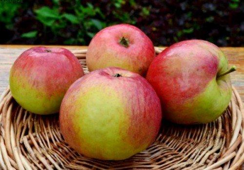 Плоды Жигулёвское