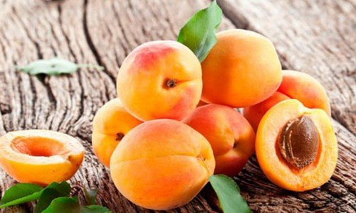 Плоды Краснощёкого абрикоса в разрезе