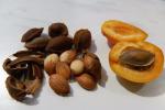 Семя косточки абрикосаАнанасного
