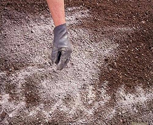 Доломитовая мука на почве