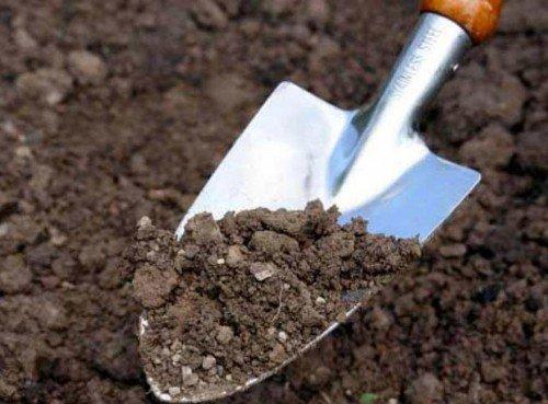 Перекапывание почвы