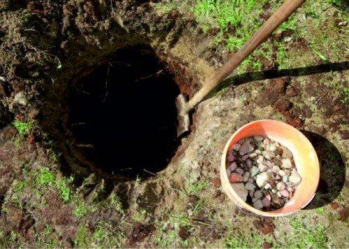 Подготовка котлована для посадки груши
