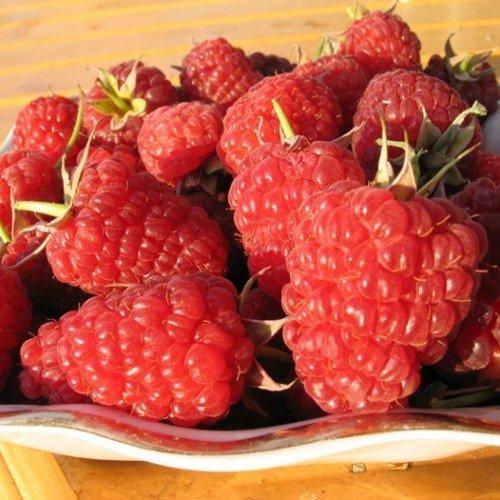 Урожай малины на столе