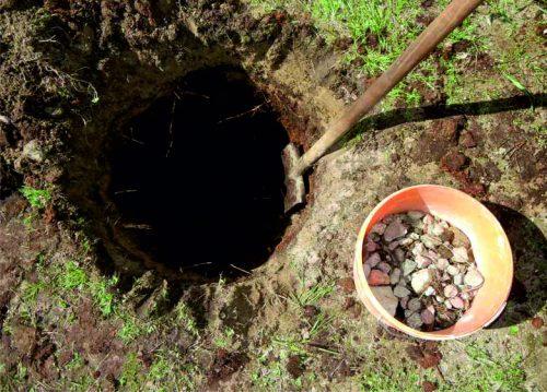 Посадочная яма и ведро с щебёнкой