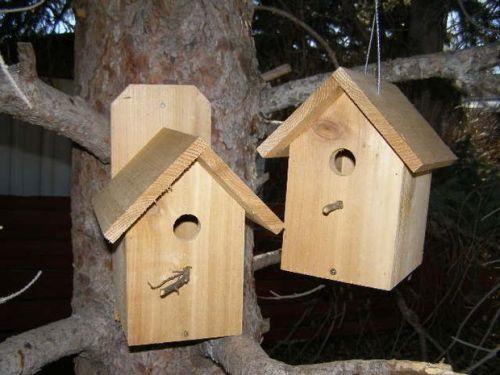 два деревянных скворечника