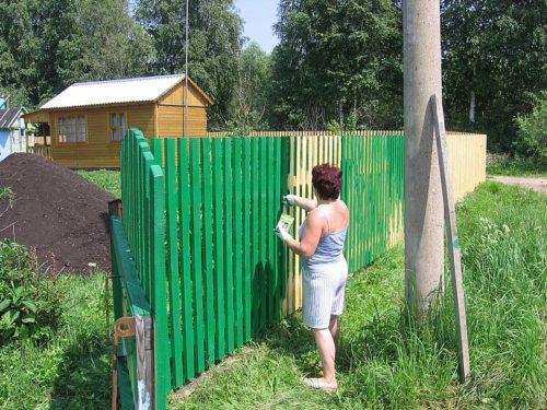 Женщина красит деревянный забор в зелёный цвет